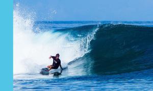 BLISS Surf